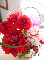 季節の花コース