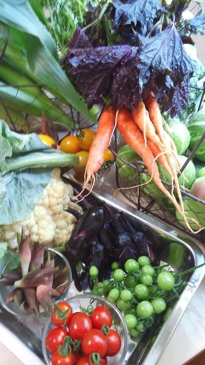 有機野菜と花のアレンジメント